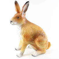 Hazen en konijnen