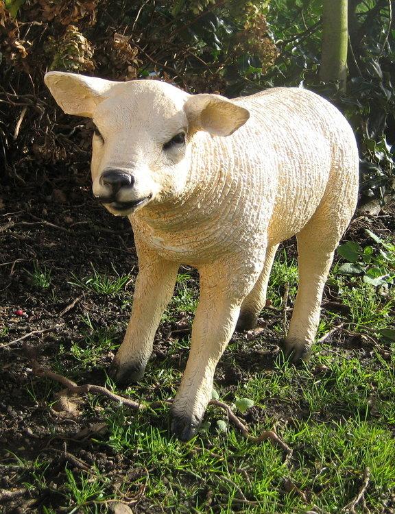 Texels schaap Lam op ware grootte polyester