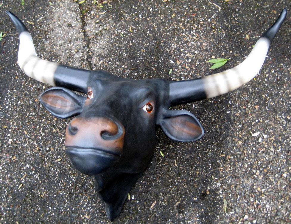 koe lang hoorn