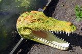 krokodil-kop-polyester-beeld-
