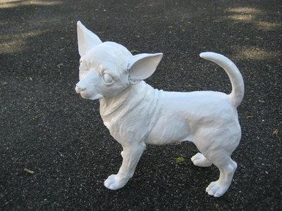 Chihuahua 37cm wit hoogglans kunsthars