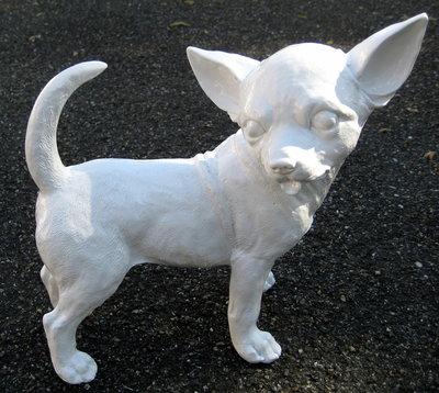 Chihuahua 30cm wit hoogglans kunsthars
