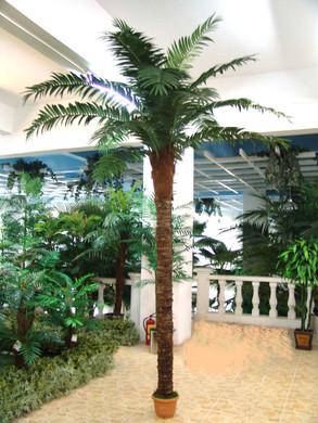 Palmboom 275cm