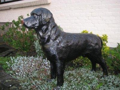 Labrador zwart polyester 95cm €95,00