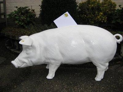 Spaar-enveloppen varken  trouw  varken