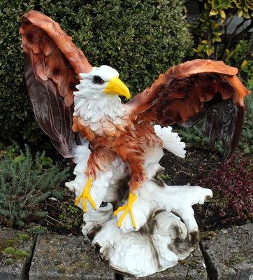 Adelaar 69cm open vleugels op rots