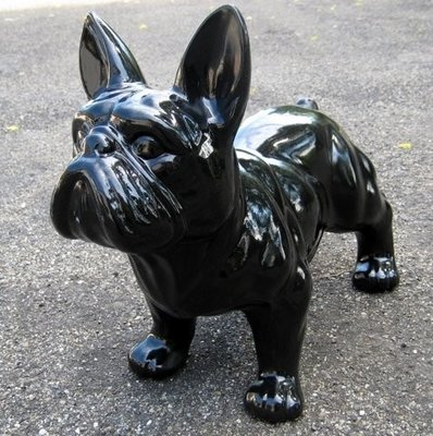 Franse bulldog zwart 50cm
