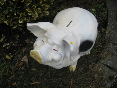 Spaarvarken trouwvarken