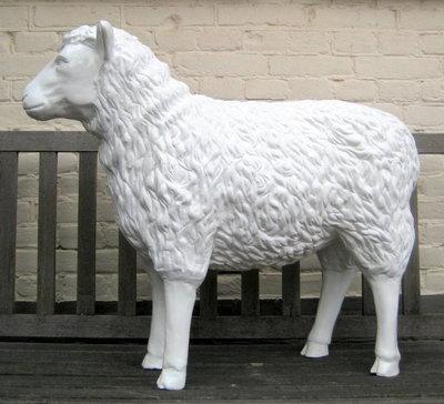 schaap-kunst-beeld 80cm geheel wit