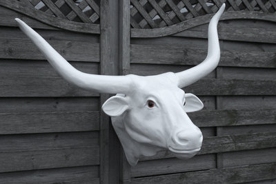 buffel kop lang hoorn polyester wit