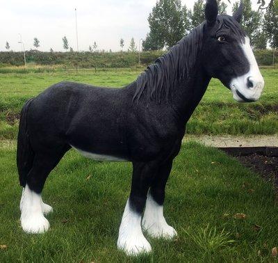 Tinker paard zwart