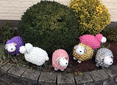 Schaap Wollie Fun Sheep goud