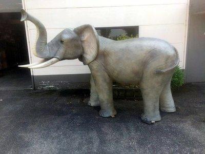 olifant life size 320x220 cm