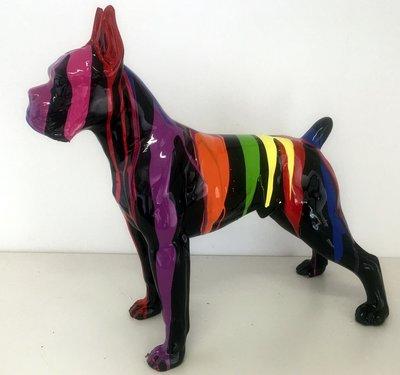 Boxer polyester 49cm colorful splash  hoogglans