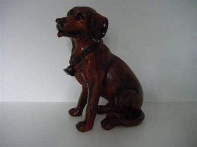 Hond Beeld Labrador zittend met halsband