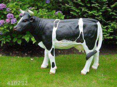 prijs koe