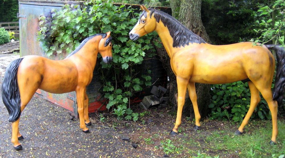 Paard  Welsh Pony 176cm