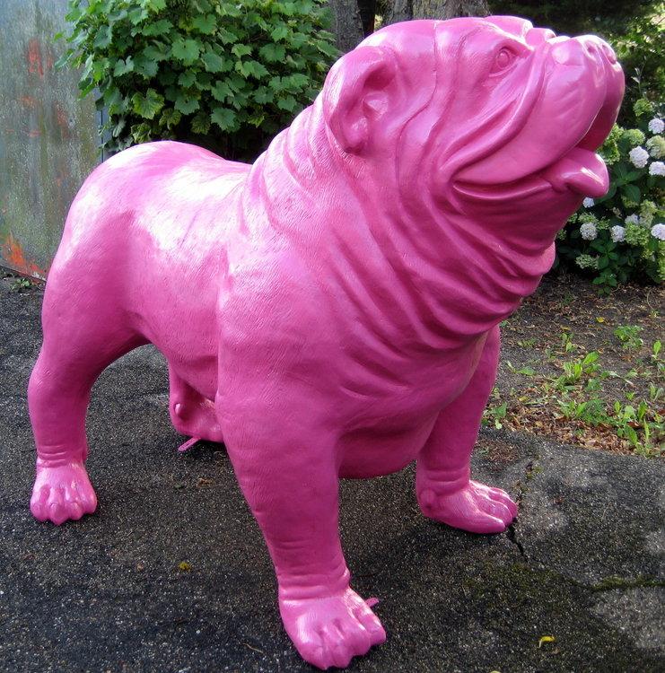 engelse bulldog  Fuchsia roze