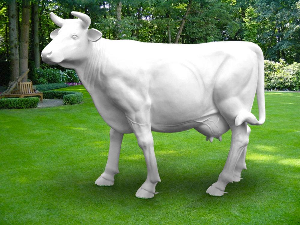 Koe beeld polyester Levensgrote koe - wit€495
