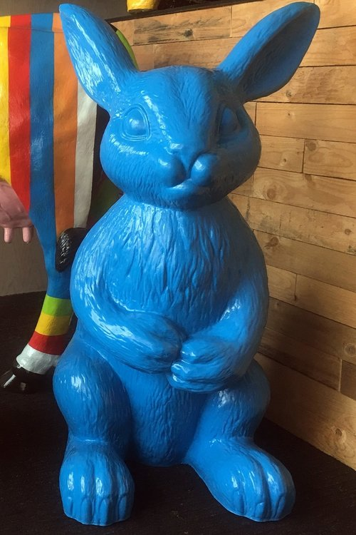Haas XL 90 cm polyester blauw