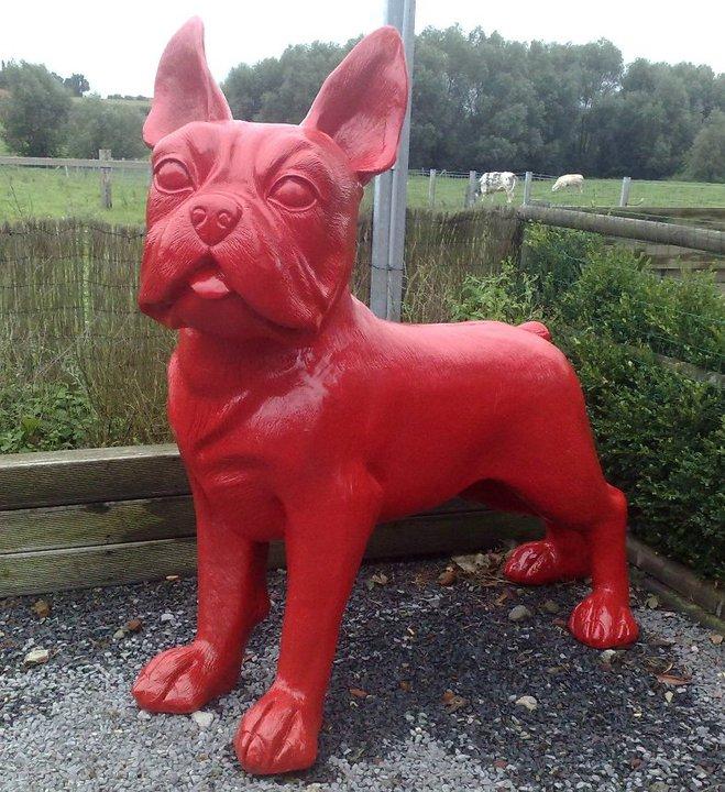 Franse Bulldog  XXL rood
