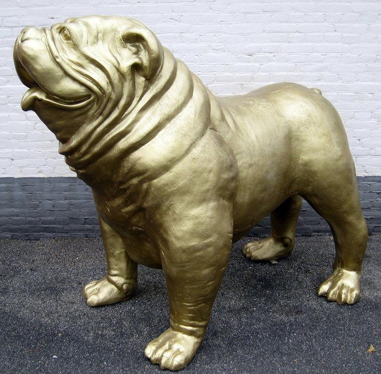 engelse bulldog XXL goud