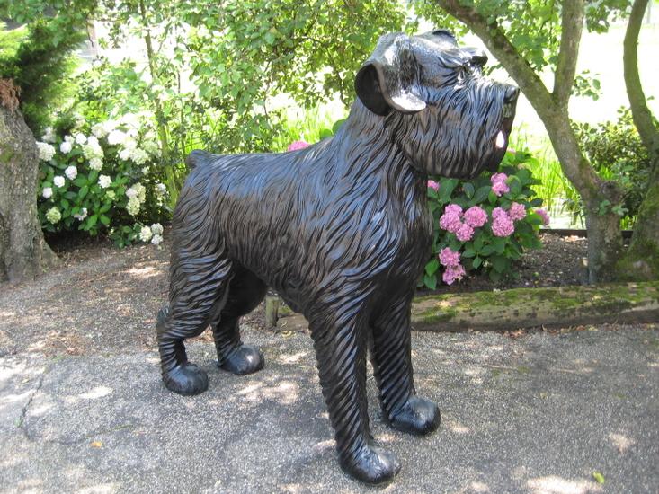Hond Bouvier Beeld Hond Mega Groot