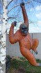 orang-oetan-aap