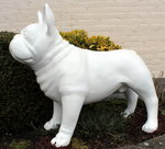 franse bulldog - gepolijst-glossy-polyester-beeld-hond
