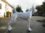 duitse Deense Dog polystone  wit hoogglans