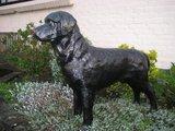 Labrador zwart polyester 95cm €75,00