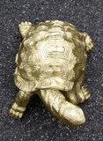 schildpad -goud-polyester -verguld