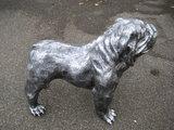 engels-bulldog-oud zilver