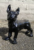 franse bulldog - decoratie beeld -