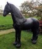 fries paard beeld