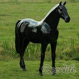 levensgroot paard