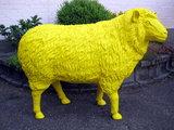 schaap polyester