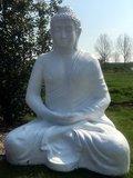 boeddha XXXL zittend mega boeddha beeld decolife moordrecht