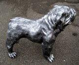 beeld engels bulldog oud zilver polyester beeld bulldog