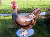 kip hen-barnevelder-decolife
