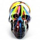 skull -doodshoofd-xxl-kunst dripping