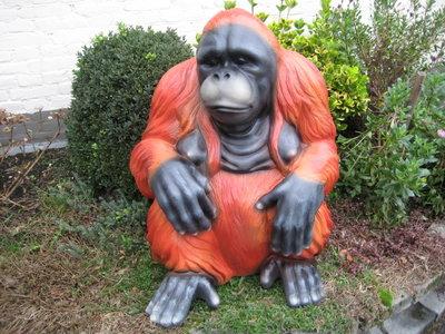 Aap Chimpansee