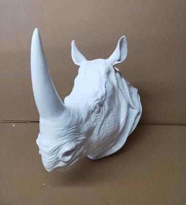Neushoorn Rhino -kop - wit