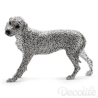 Dalmatier - beeld polyresin beeld