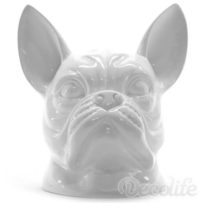 Franse bulldog kop - wit