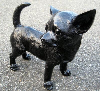 Chihuahua - zwart hoogglans - 30cm