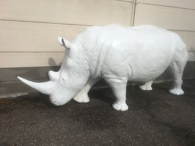neushoorn Rhinoceros beeld polyester levensgroot kunstbeeld