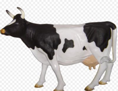 Levensgrote zwart bonte koe - luxe uitvoering