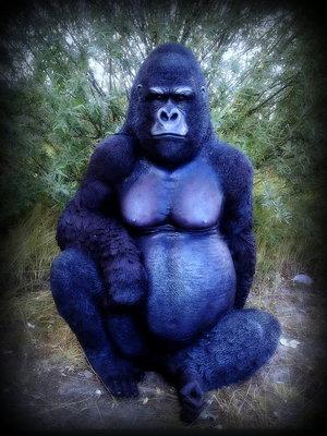Aap Gorilla 125cm polyester beeld zwart