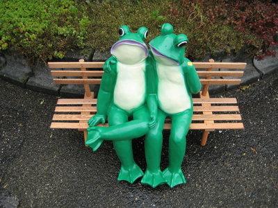 kikkerpaar op bank